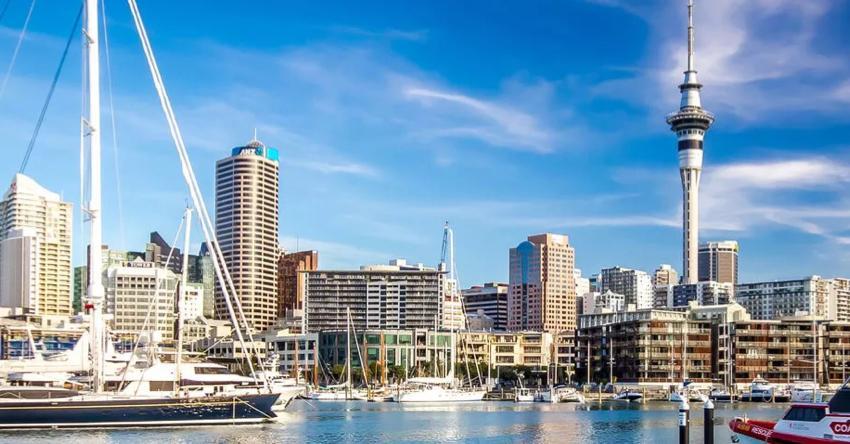 #Conexão: Auckland